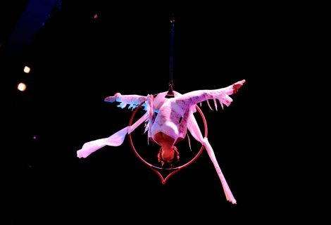 Immortal Heart, aerial act